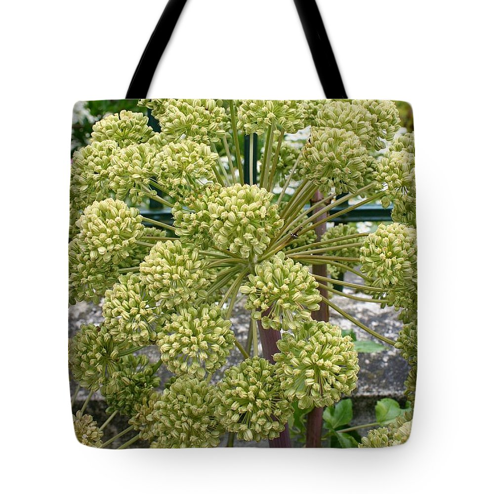 Angelica Tote Bag featuring the photograph Angelica by Christiane Schulze Art And Photography