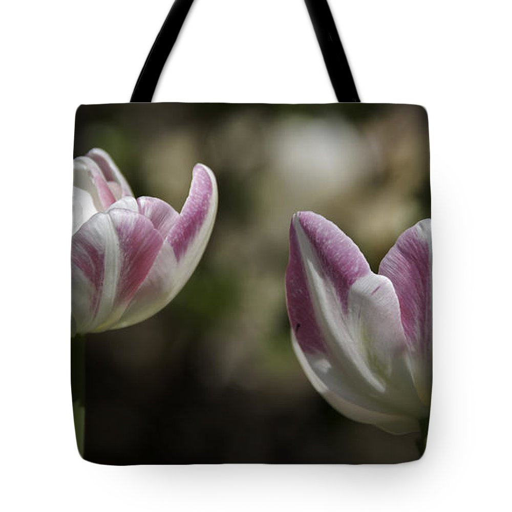 Flowers Tote Bag featuring the photograph Angelique Peony Tulips 2 by Teresa Mucha
