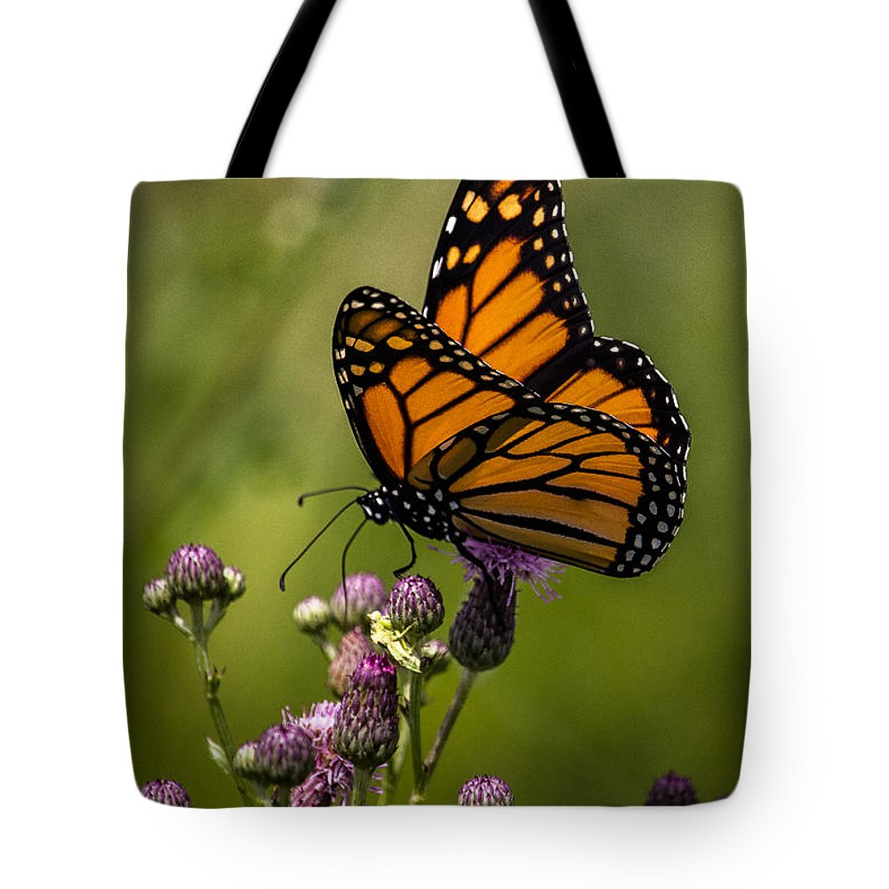 Monarch Tote Bag featuring the photograph Animal Life 5189 by Dale Peterson