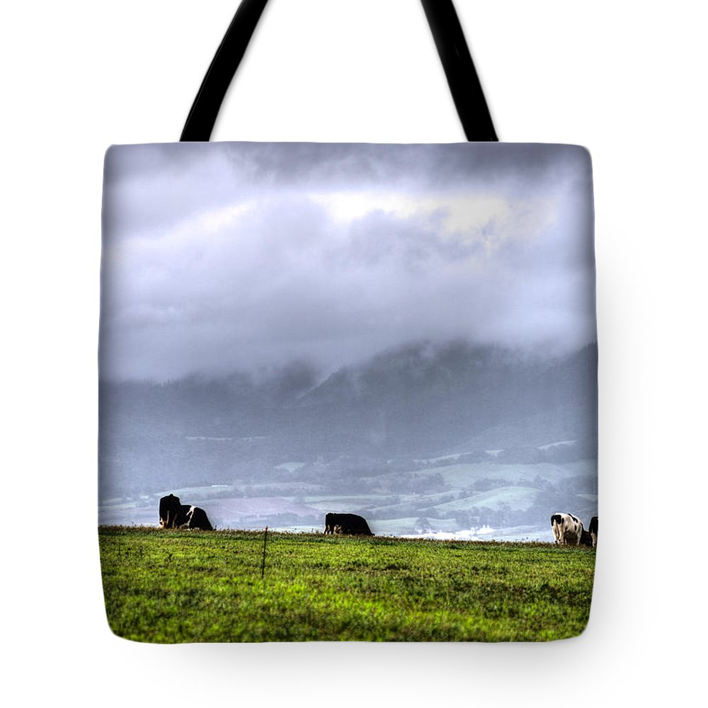 Agriculture Tote Bag featuring the photograph Animals Livestock-03 by Joseph Amaral