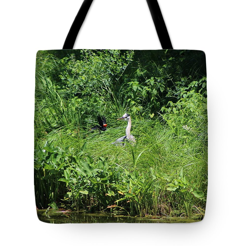 Marsh Tote Bag featuring the photograph Annoyed - Heron and Red Winged Blackbird 5 of 10 by Colleen Cornelius