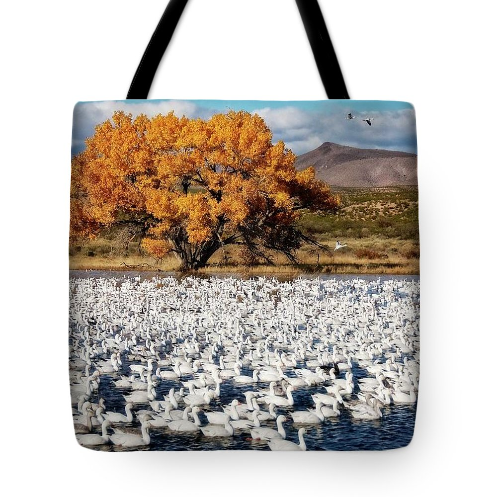 Nature Tote Bag featuring the photograph Annual Snow Geese Meet-up, Bosque Del Apache, New Mexico by Zayne Diamond Photographic