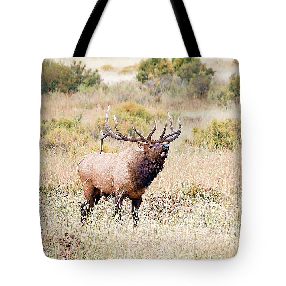 Colorado Tote Bag featuring the photograph Answering The Challenge by Bob Helmig
