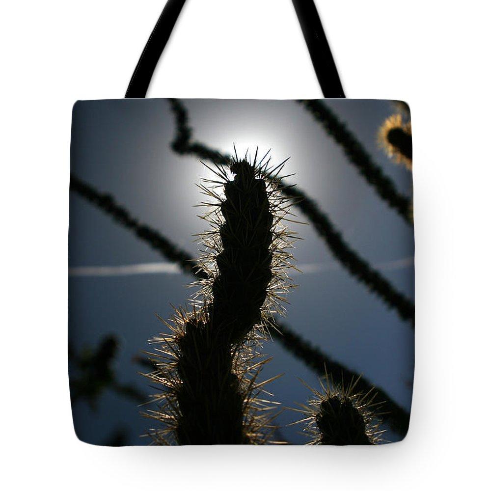 Cactus Tote Bag featuring the photograph Anza Borrego Cholla Sillouette by Chris Brannen