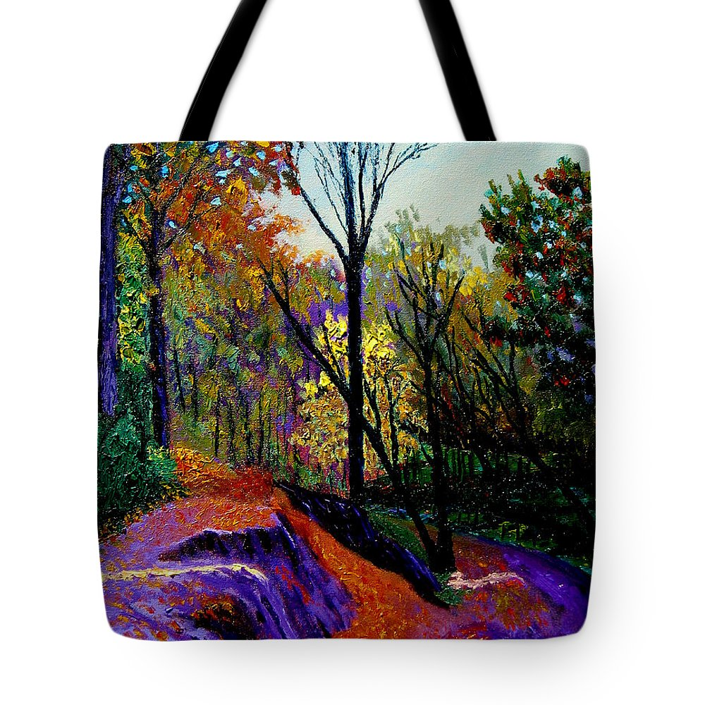 Twilight Tote Bag featuring the painting Ap 10 26 by Stan Hamilton