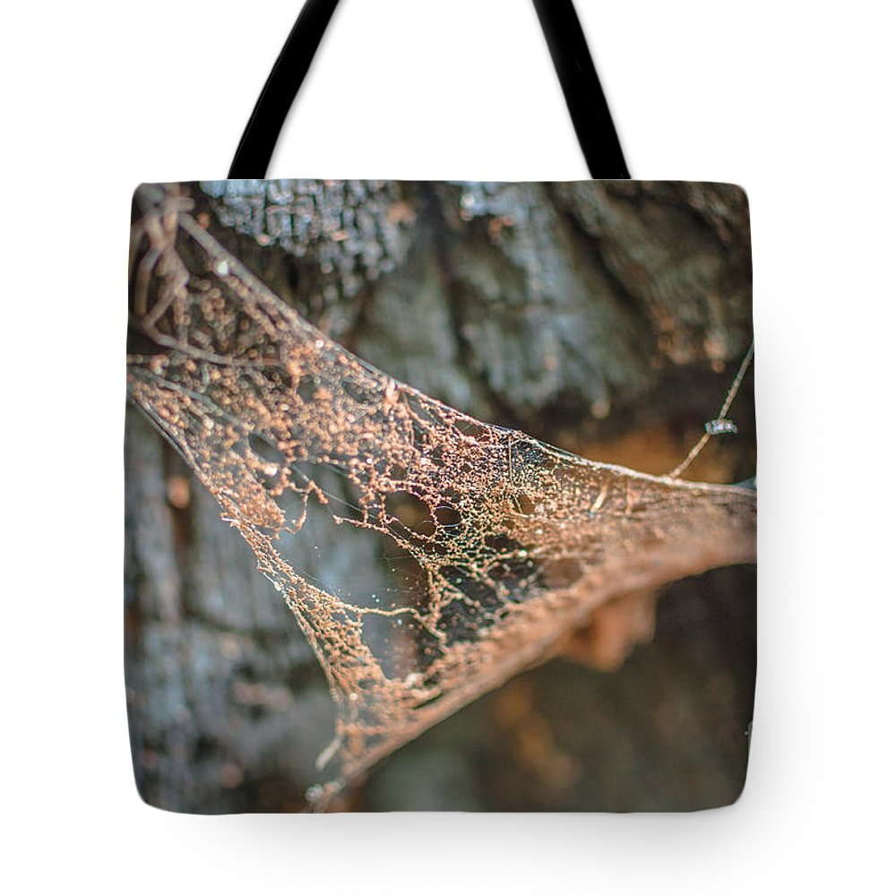 Landscape Tote Bag featuring the photograph Apathy by Lyudmila Prokopenko