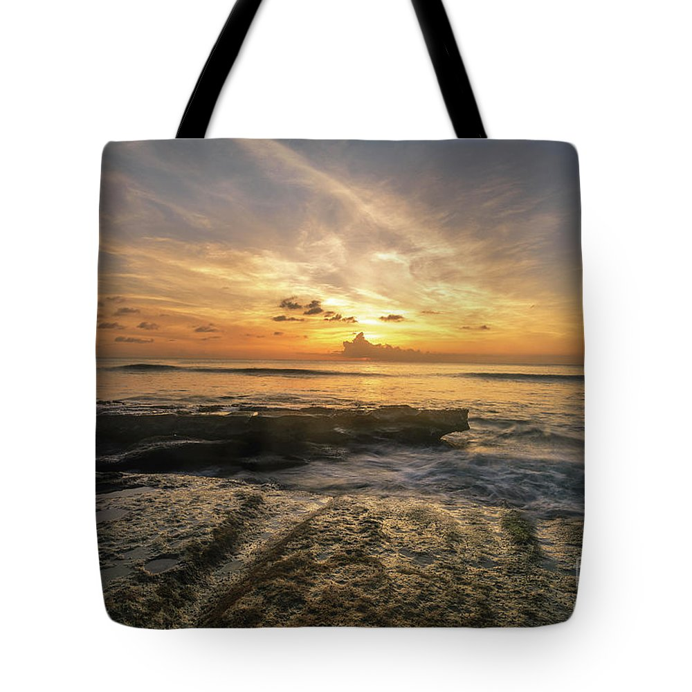 2017 Tote Bag featuring the photograph Apogee by Hugh Walker
