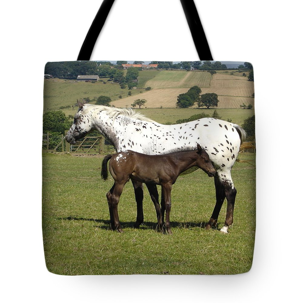 Horse Tote Bag featuring the photograph Appaloosa Mare And Foal by Susan Baker