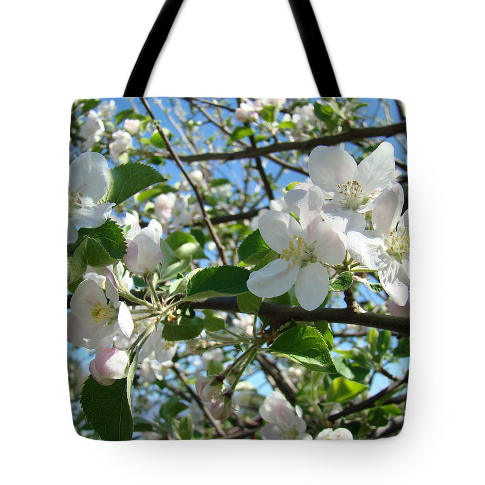 �blossoms Artwork� Tote Bag featuring the photograph Apple Blossoms Art Prints 60 Spring Apple Tree Blossoms Blue Sky Landscape by Baslee Troutman