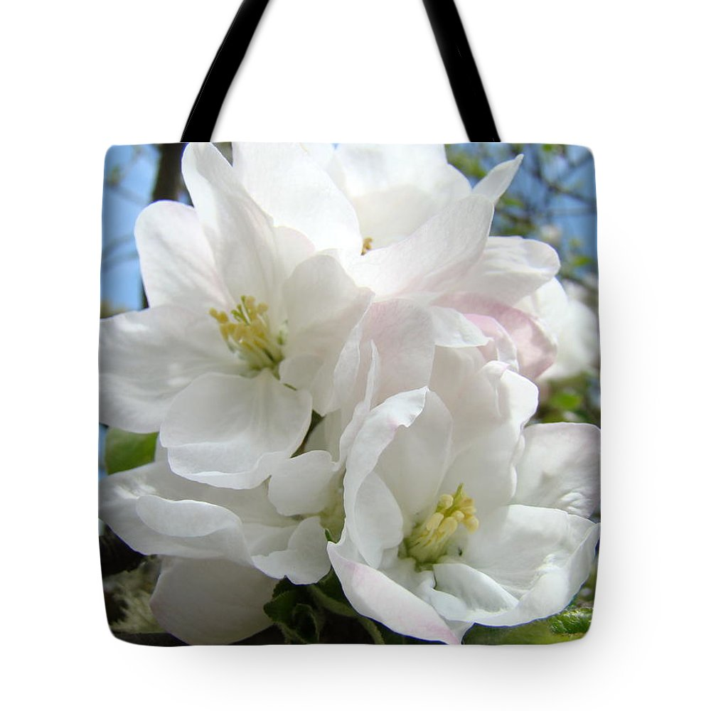 �blossoms Artwork� Tote Bag featuring the photograph Apple Blossoms Art Prints Giclee 48 Spring Apple Tree Blossoms Blue Sky Macro Flowers by Baslee Troutman