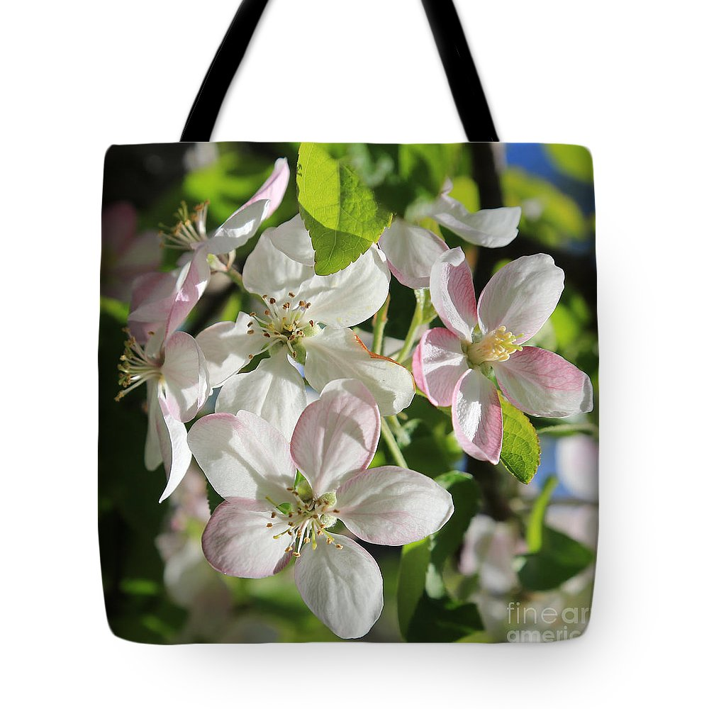Apple Blossoms Tote Bag featuring the photograph Apple Blossoms Square by Carol Groenen