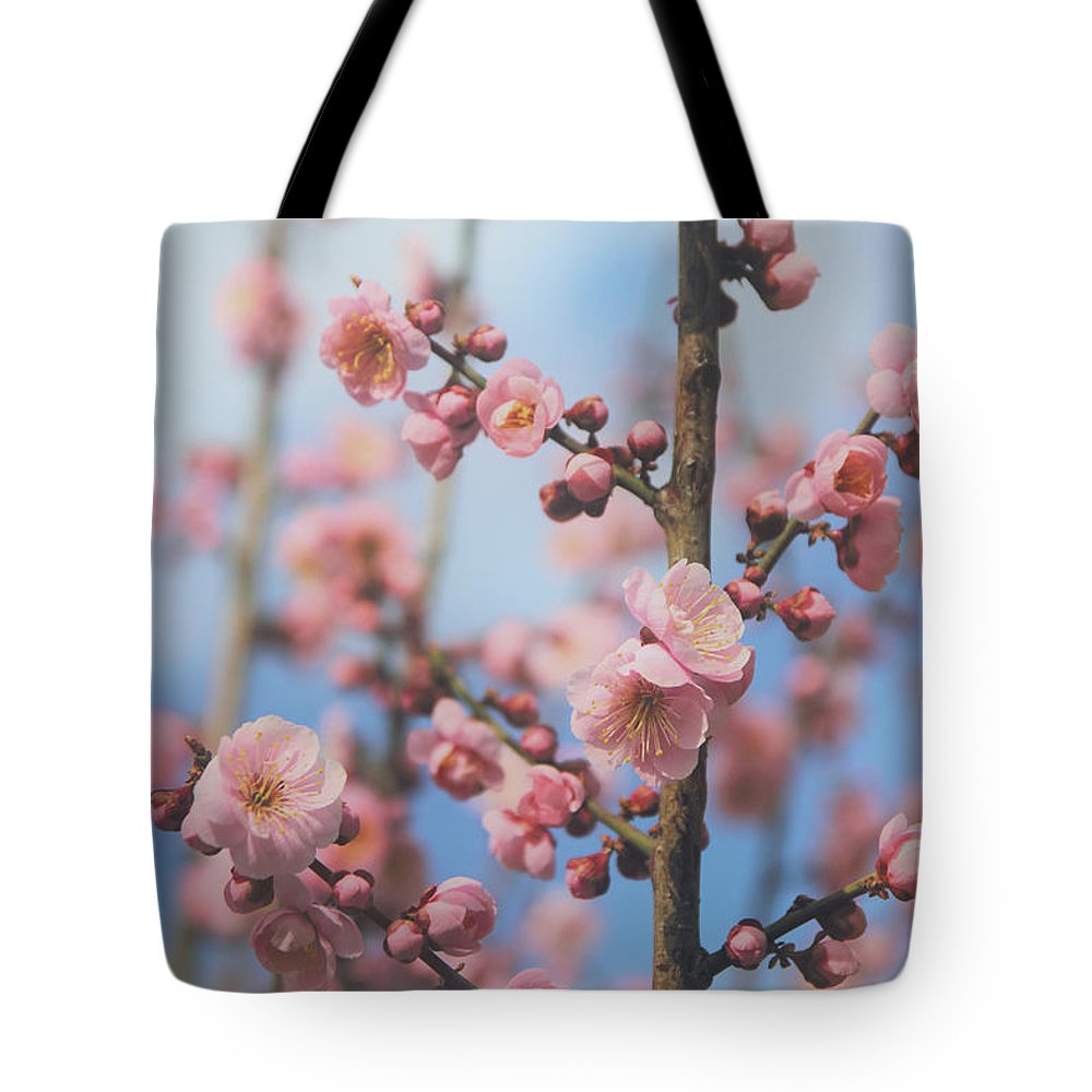 Flowers Tote Bag featuring the photograph Apricot Blossom by Jessica Jenney