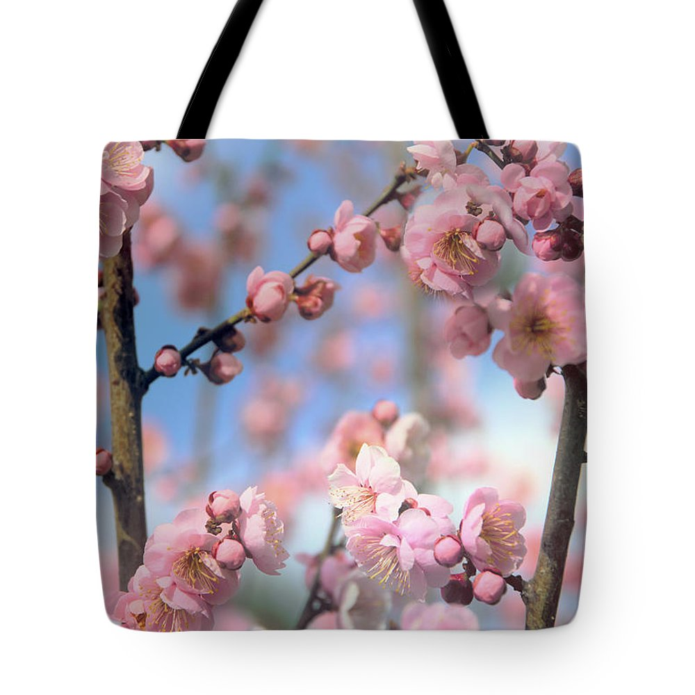 Flowers Tote Bag featuring the photograph Apricot Tree Blossoms by Jessica Jenney