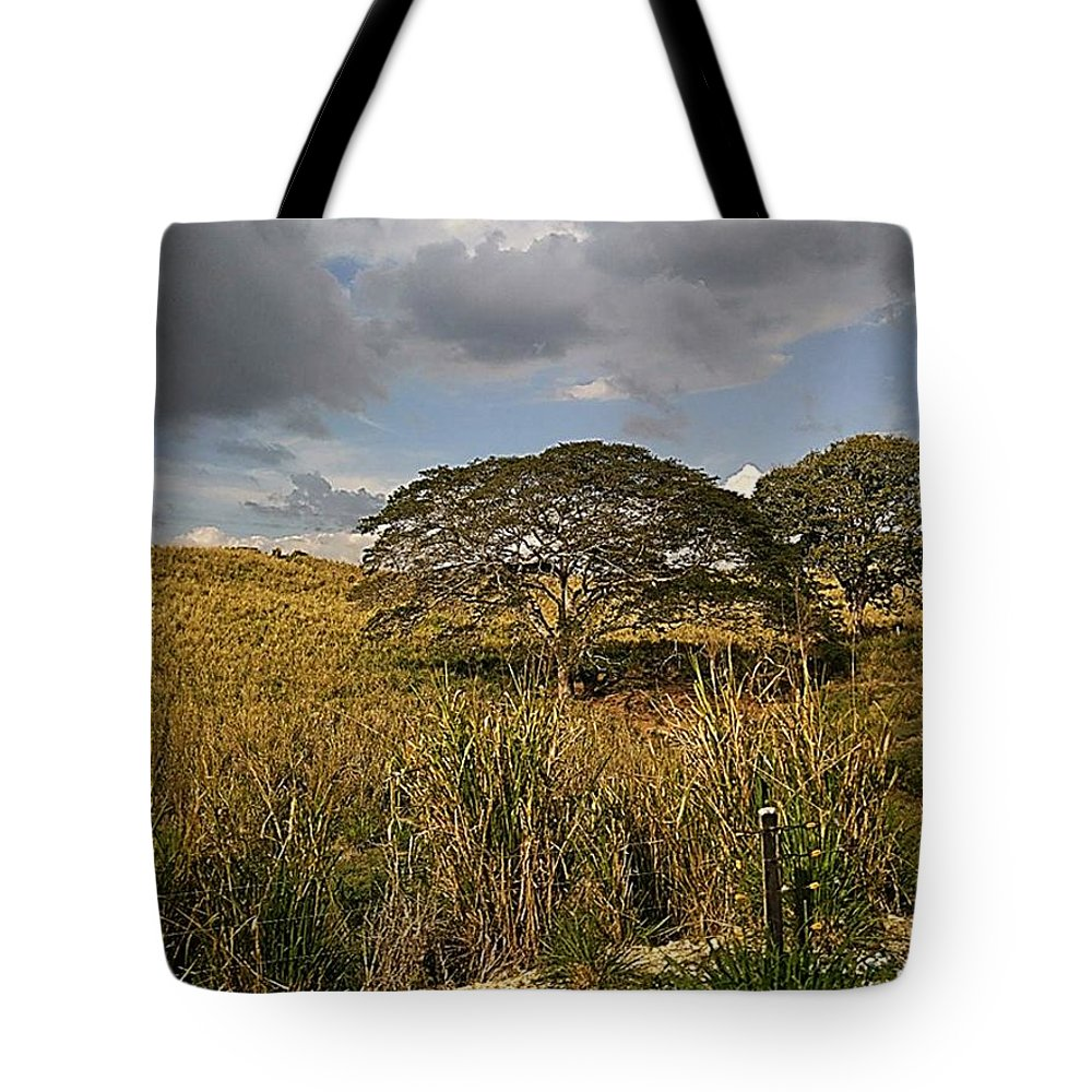 Tote Bag featuring the photograph Arboletes by Pahola Baro Sfer