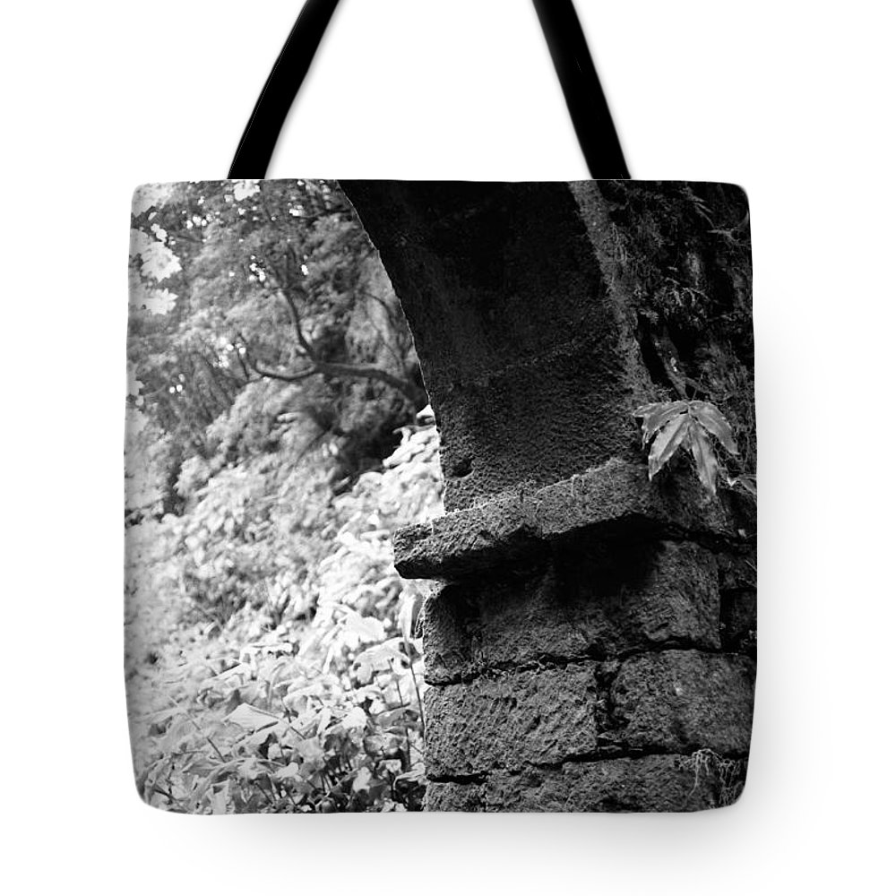 Arc Tote Bag featuring the photograph Arc by Gaspar Avila