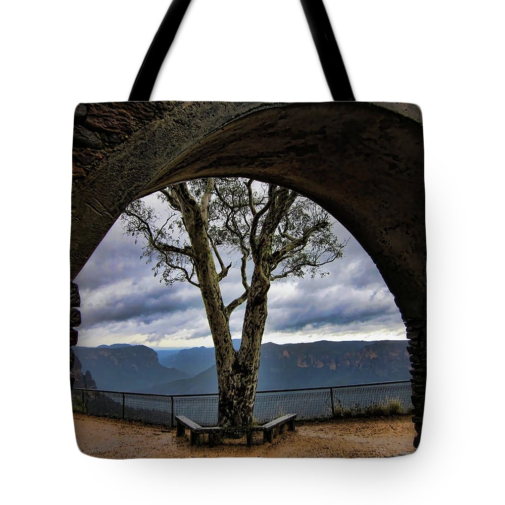 Tree Tote Bag featuring the photograph Arch Tree by Douglas Barnard