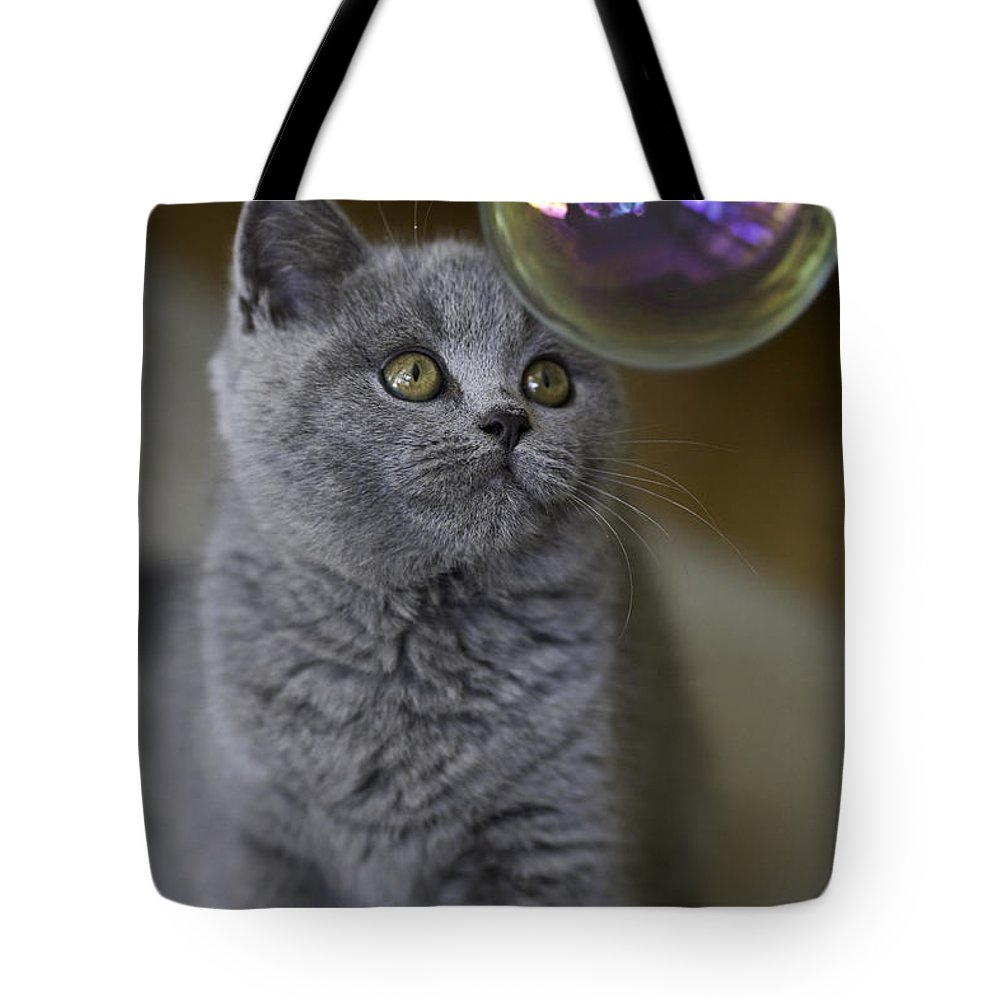 Cat Tote Bag featuring the photograph Archie With Bubble by Sheila Smart Fine Art Photography
