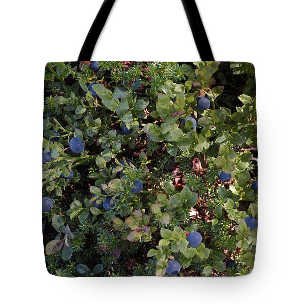 5e4620fa273 Arctic Blueberry Tote Bag for Sale by Pekka Sammallahti