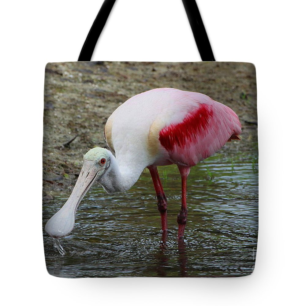 Roseate Spoonbill Tote Bag featuring the photograph Are U Looking At Me by Barbara Bowen