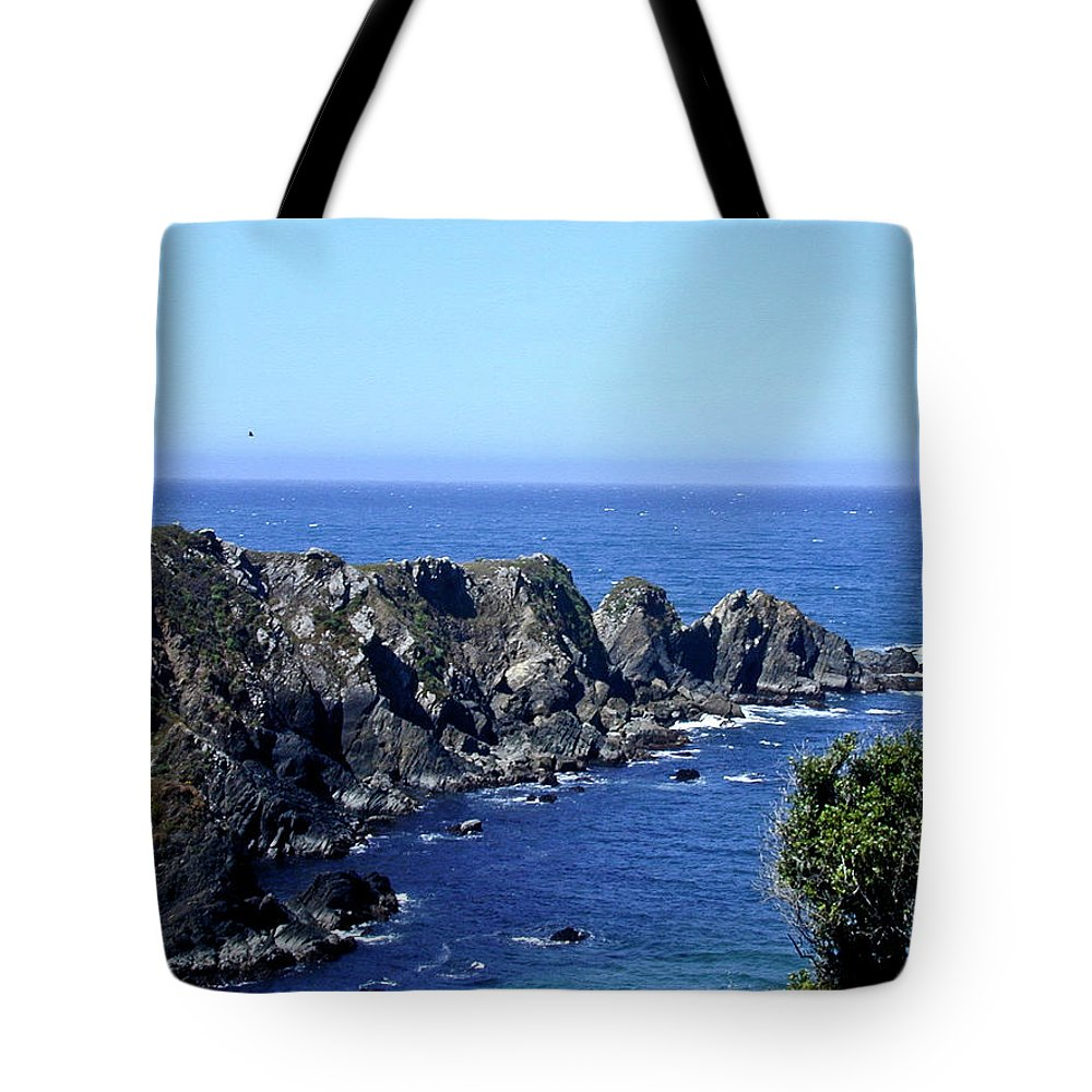 Arena Tote Bag featuring the photograph Arena Point California by Douglas Barnett