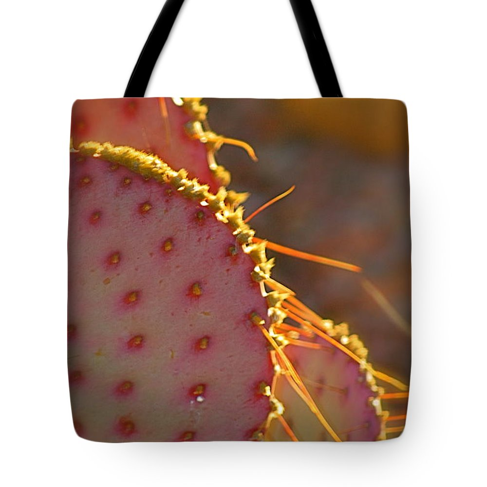 Cactus Tote Bag featuring the photograph Arizona Cacti by Nadine Rippelmeyer