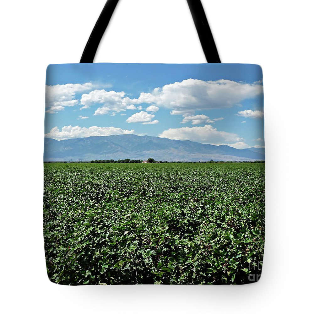 Arizona Cotton Field Tote Bag featuring the photograph Arizona Cotton Field by Methune Hively