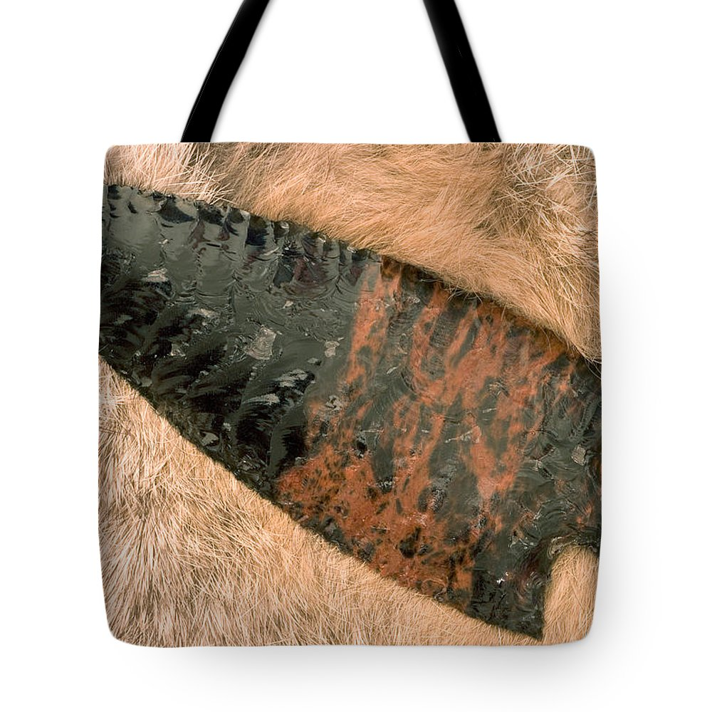 Arrow Tote Bag featuring the photograph Arrow Point by Carol Leigh
