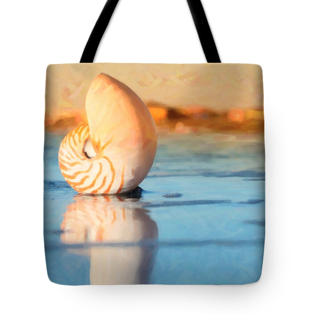 Beach Tote Bag featuring the photograph Artistic Nautilus by Barbara Rabek