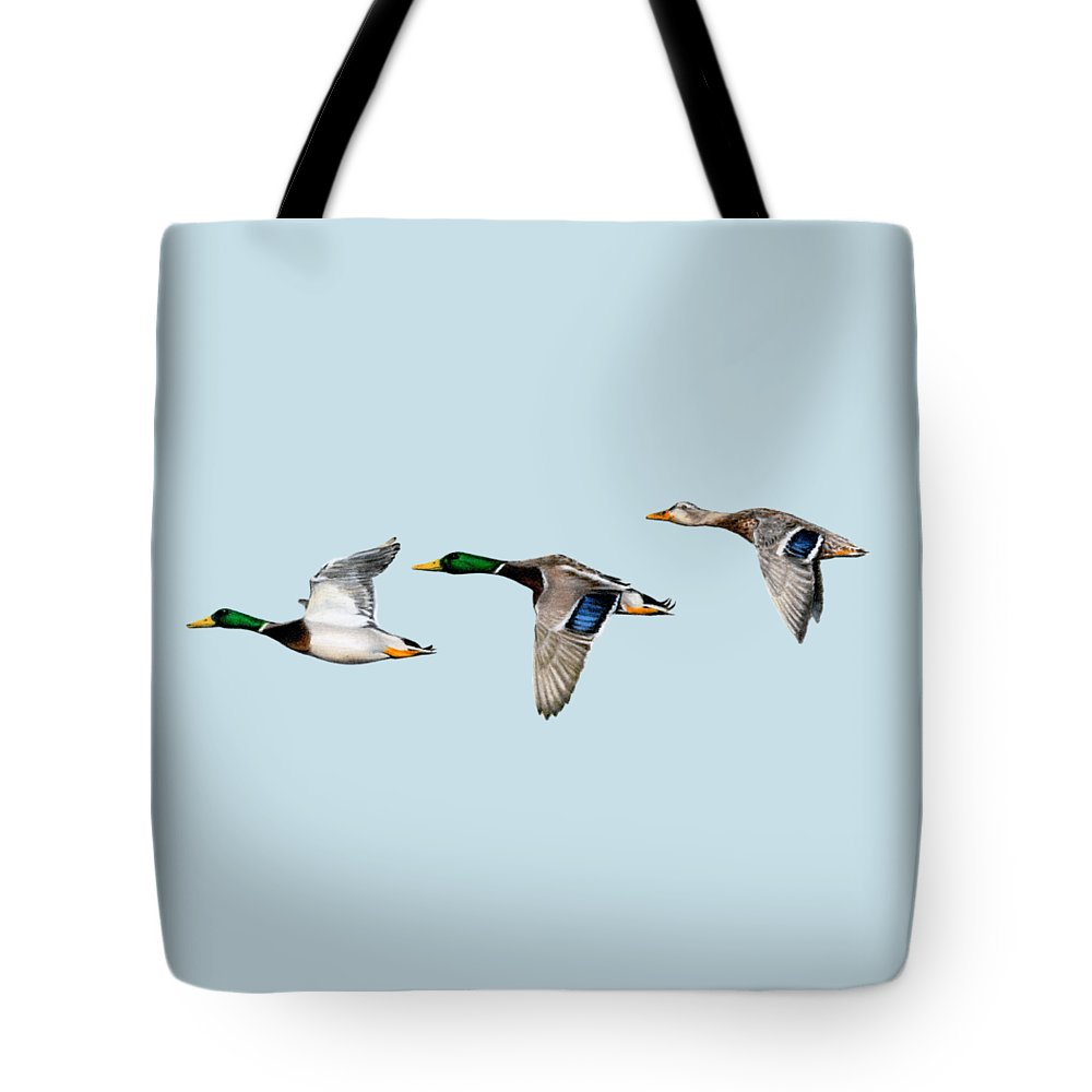 Canadian Geese Lifestyle Products