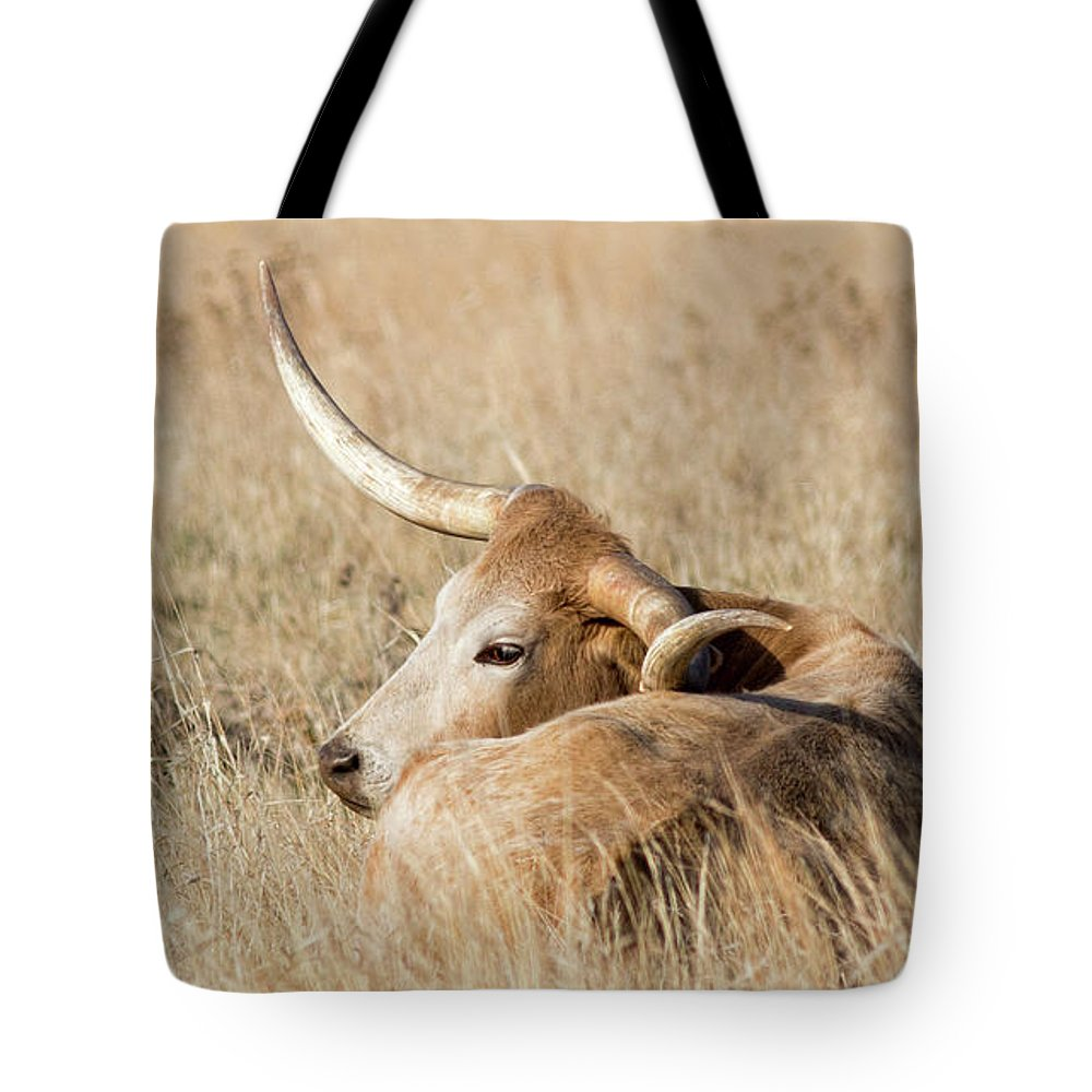 2017 April Tote Bag featuring the photograph Prairie Longhorn by Bill Kesler
