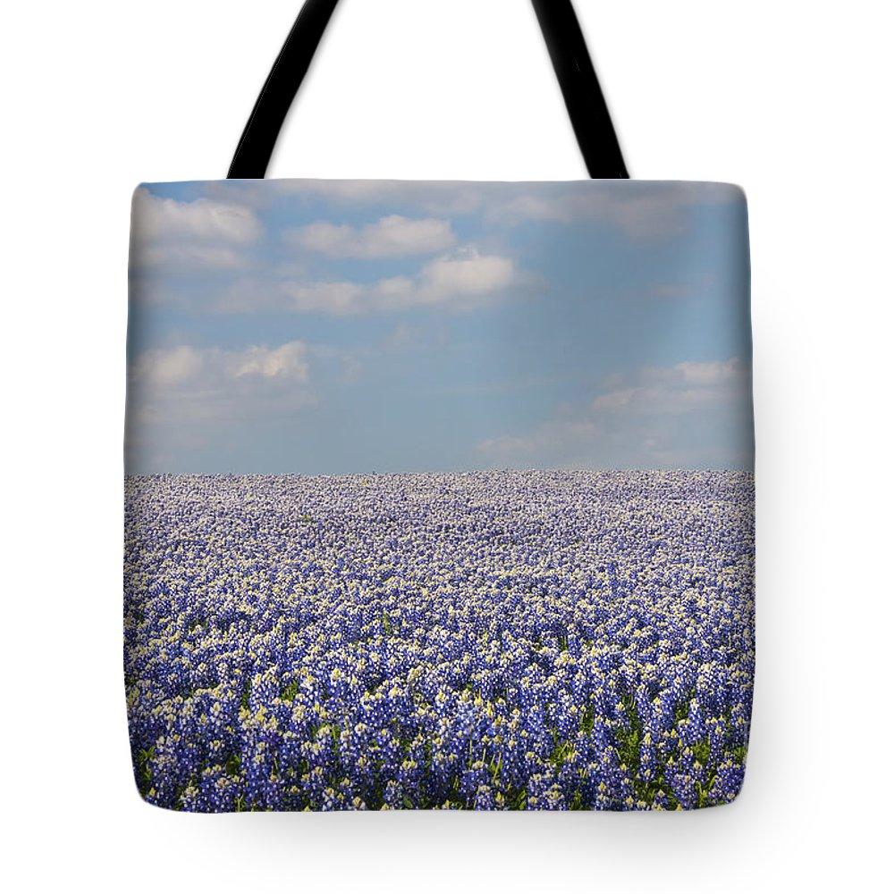 Muleshoe Bend Recreation Area Texas Bluebonnet Bluebonnets Flower Flowers Bloom Blooms Landscape Landscapes Spring Tote Bag featuring the photograph As Far As The Eye Can See by Bob Phillips