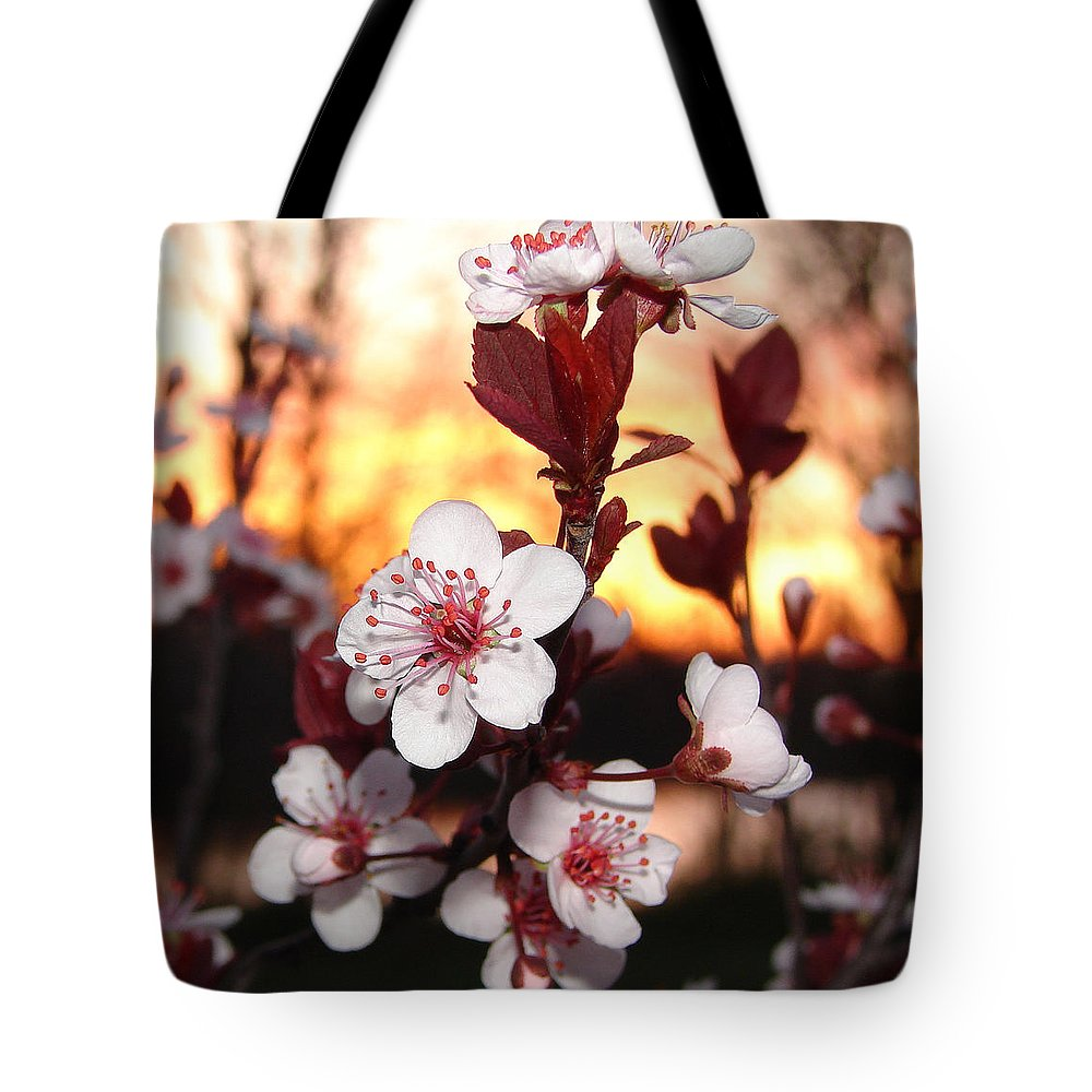 Tote Bag featuring the photograph As The Sun Sets by Luciana Seymour