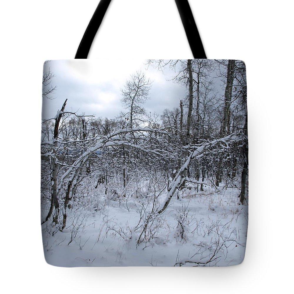 Winter Tote Bag featuring the photograph As Winter Returns by DeeLon Merritt