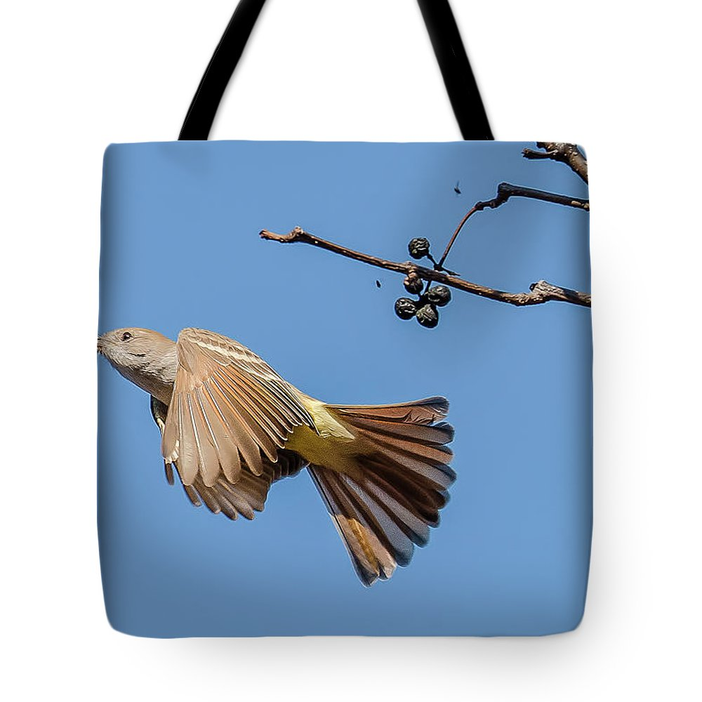 Ash-throated Flycatcher Flight Tote Bag featuring the photograph Ash-throated Flycatcher Flight by Morris Finkelstein