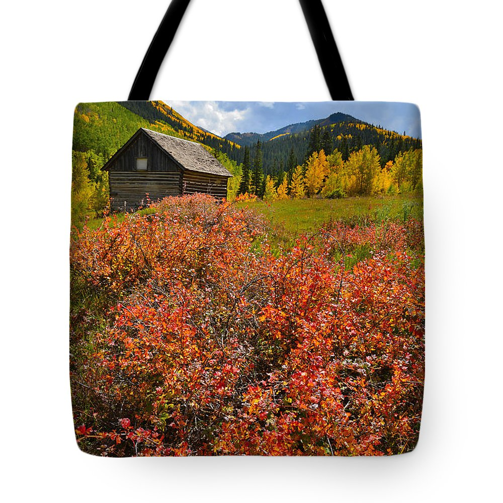 Colorado Tote Bag featuring the photograph Ashcroft Cabin by Ray Mathis
