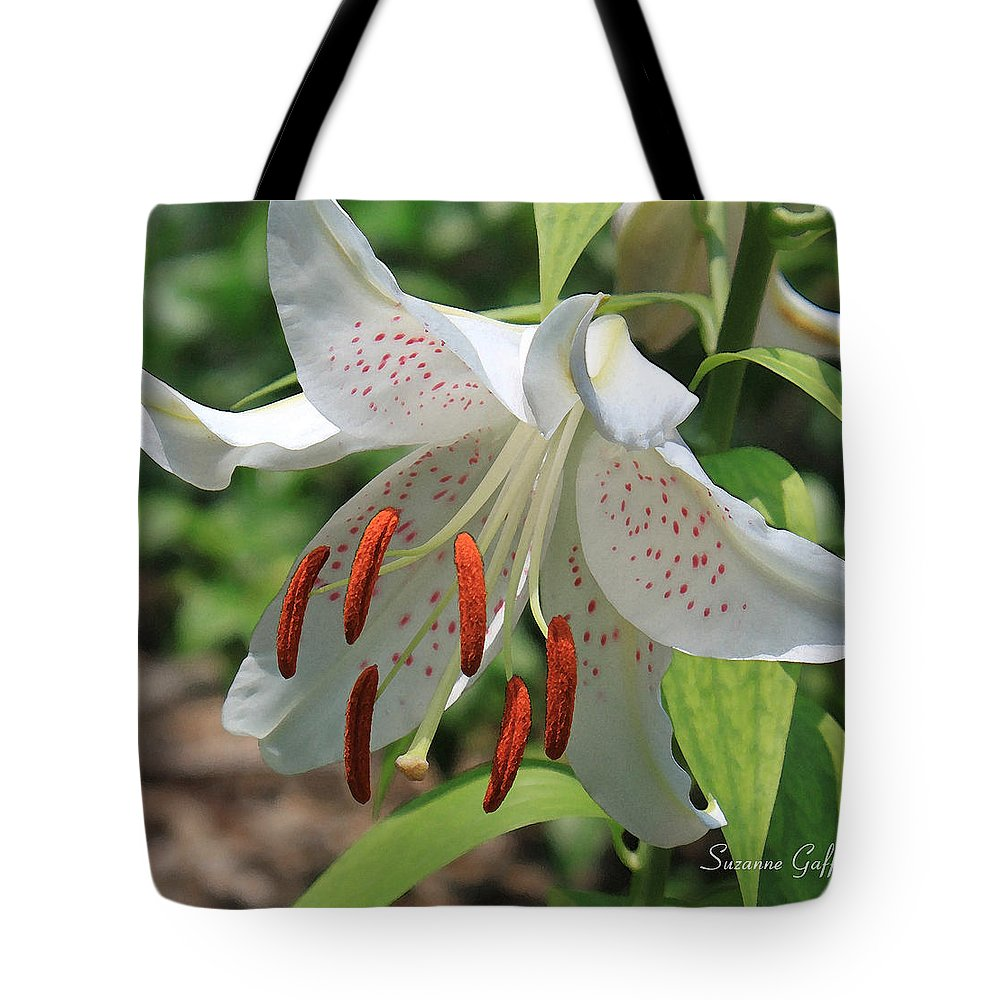 Asiatic Lily Tote Bag featuring the photograph Asiatic Lily by Suzanne Gaff