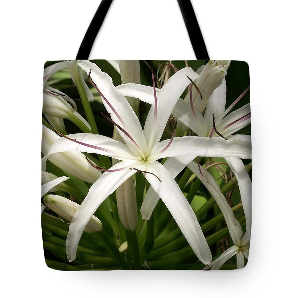 Flower Tote Bag featuring the photograph Asiatic Poison Lily by Amy Fose