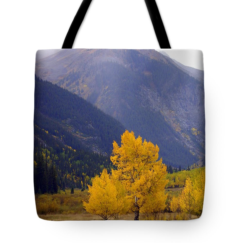 Fall Colors Tote Bag featuring the photograph Aspen Fall 4 by Marty Koch