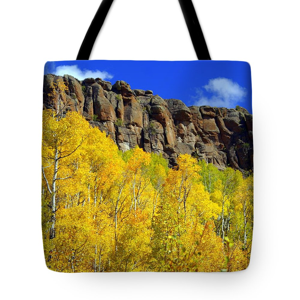 Fall Colors Tote Bag featuring the photograph Aspen Glory by Marty Koch