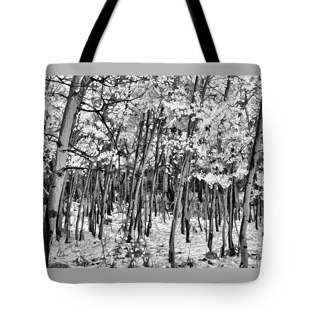 Aspen In Snow B&w Tote Bag featuring the photograph Aspen In Snow Black And White by Wes and Dotty Weber
