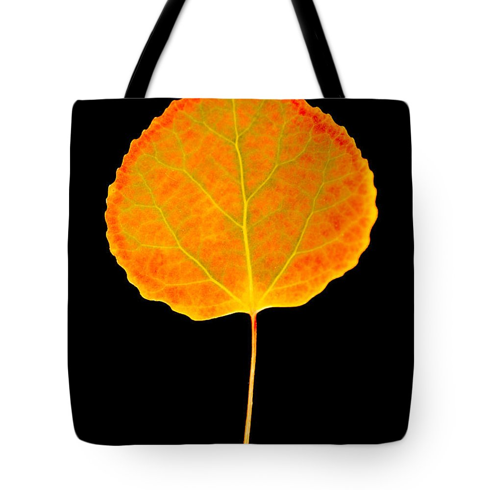 Leaf Tote Bag featuring the photograph Aspen Leaf by Marilyn Hunt