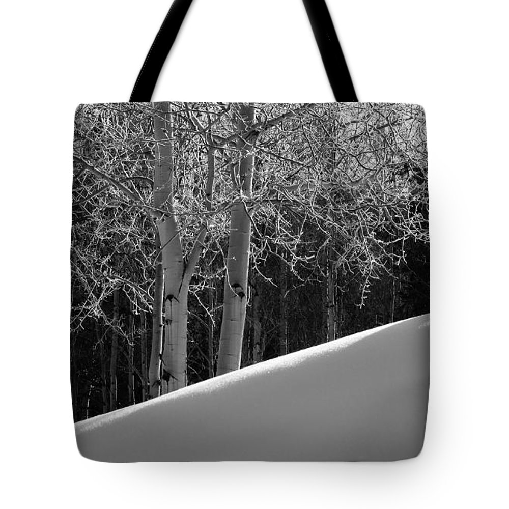 Colorado Tote Bag featuring the photograph Aspencade by Skip Hunt