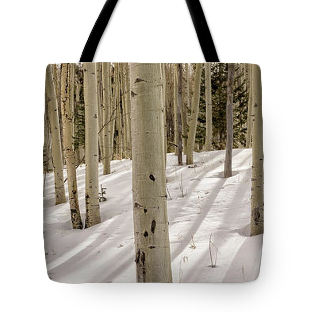 Aspen Tote Bag featuring the photograph Aspens In Winter 2 Panorama - Santa Fe National Forest New Mexico by Brian Harig
