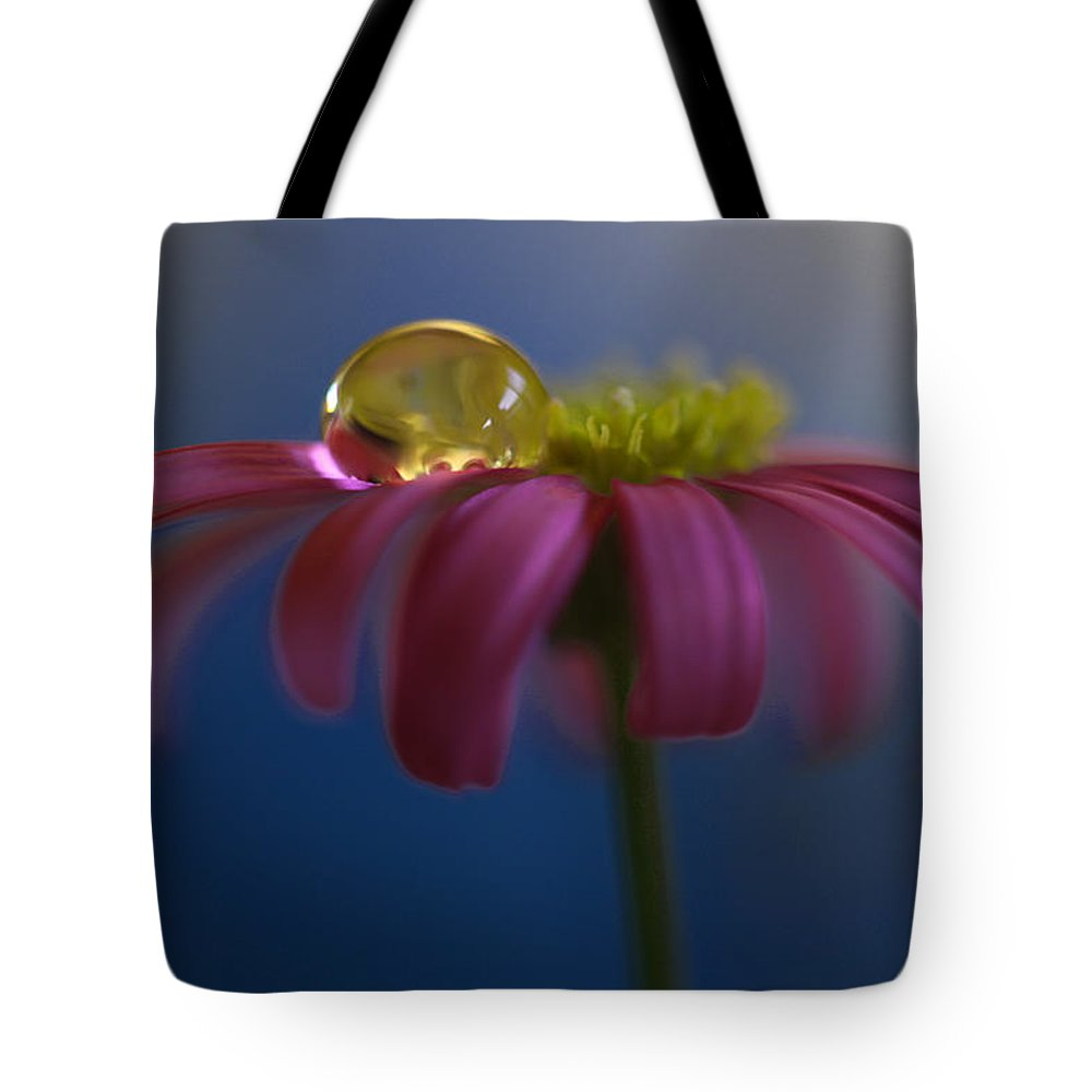 Australia Tote Bag featuring the photograph At Ease by Kym Clarke