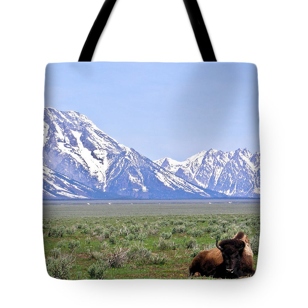 Bison Tote Bag featuring the photograph At Rest On The Range by Douglas Barnett