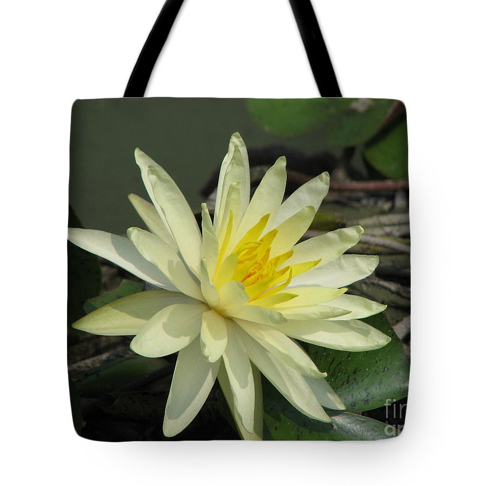 Lilly Tote Bag featuring the photograph At The Pond by Amanda Barcon