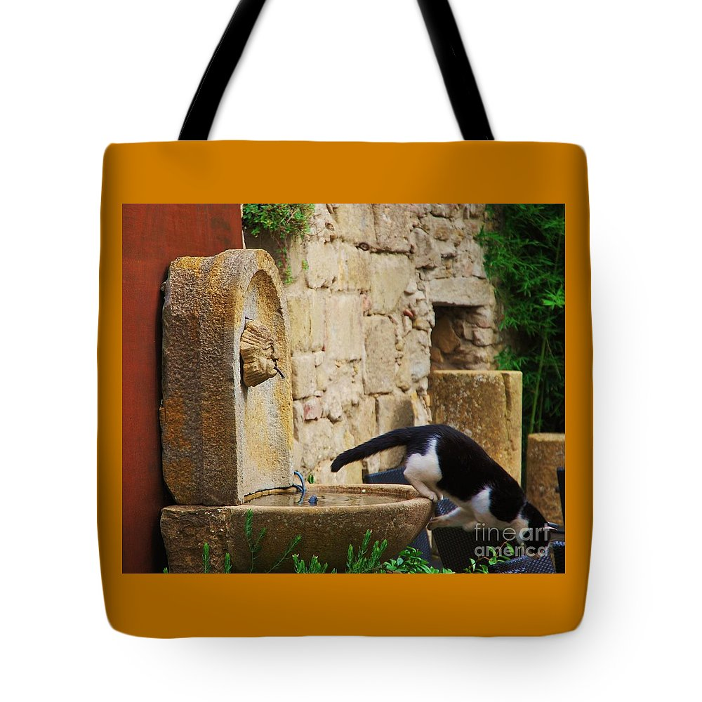 Animal Art Cat Whimsical Movement France Carcassonne Garden Stone Walls Fountain Small Sculpted Face Nature Feline Wood Print Canvas Print Metal Frame Poster Print Available On Mugs T Shirts Tote Bags Throw Pillows Shower Curtains Pouches Spiral Notebooks Phone Cases And Weekender Tote Bags Tote Bag featuring the photograph Au Revoir by Poet's Eye