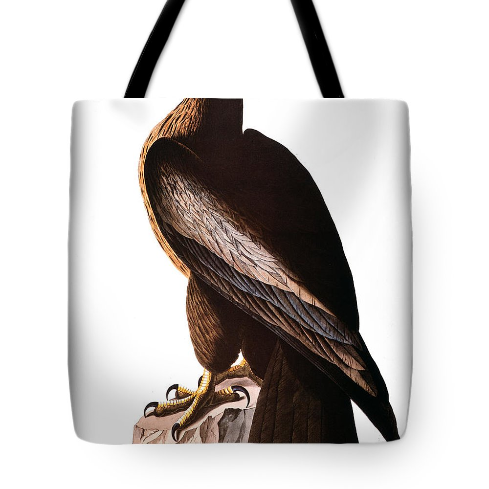 1838 Tote Bag featuring the photograph Audubon: Eagle by Granger