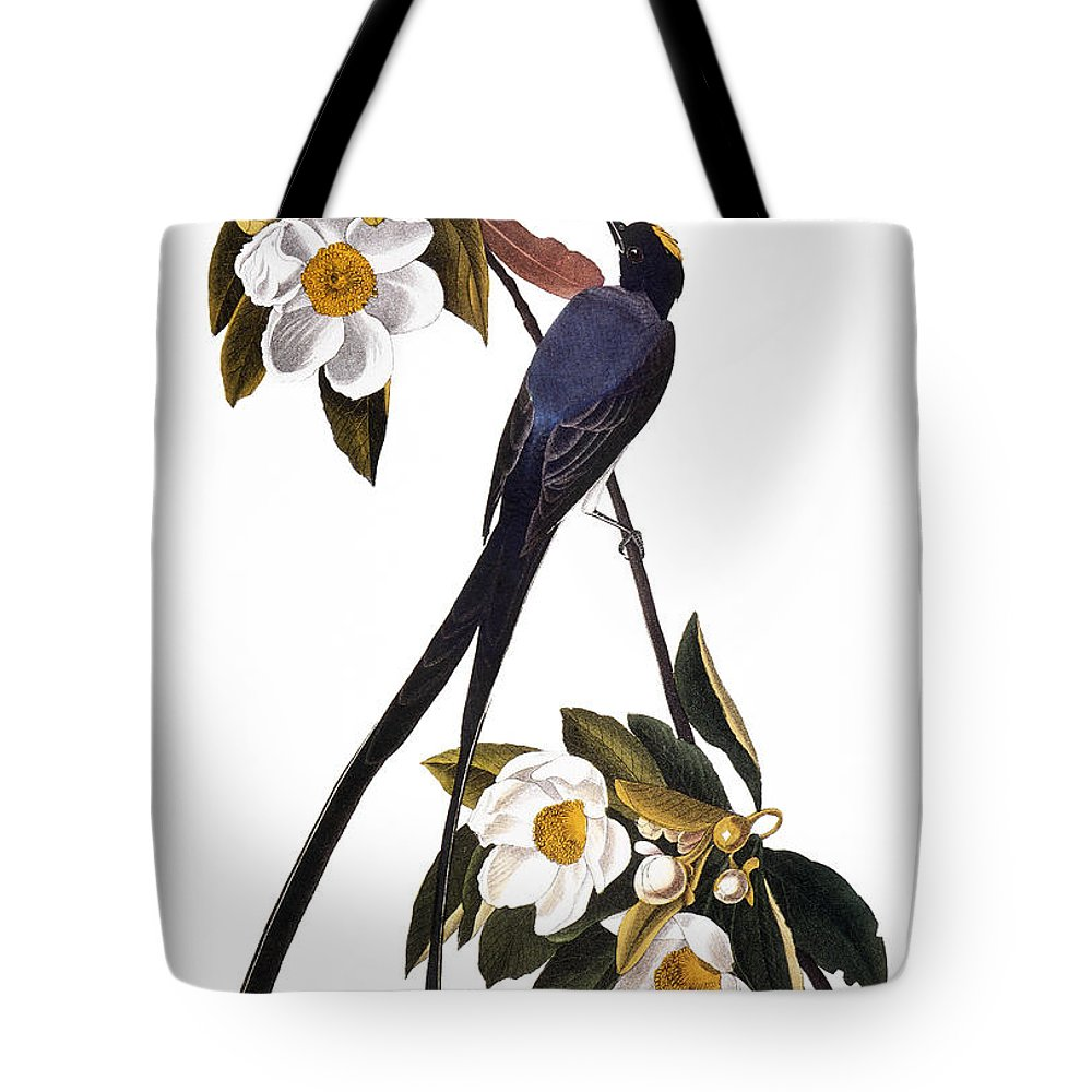 1827 Tote Bag featuring the photograph Audubon Flycatcher, 1827 by John James Audubon