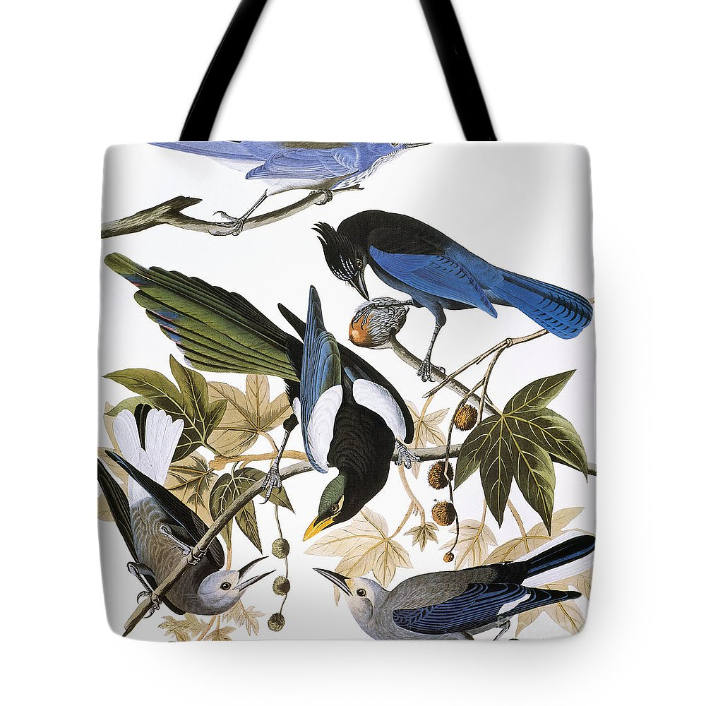 1838 Tote Bag featuring the photograph Audubon: Jay And Magpie by Granger